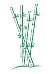 Casualmere® 4 bamboo stalks logo