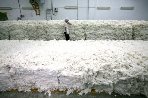 cotton bales - Getty Image