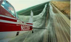 Pesticide spraying of cotton fields